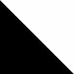 חצי לבן/חצי שחור